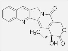 Camptothecine